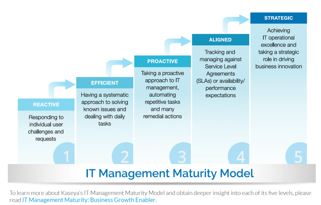 IT Management Maturity Model Kayesa